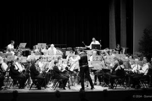 Concert annuel 2014
